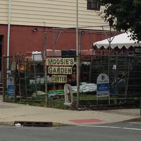 Photo of Moosie's Garden Center, Broadway in Bayonne