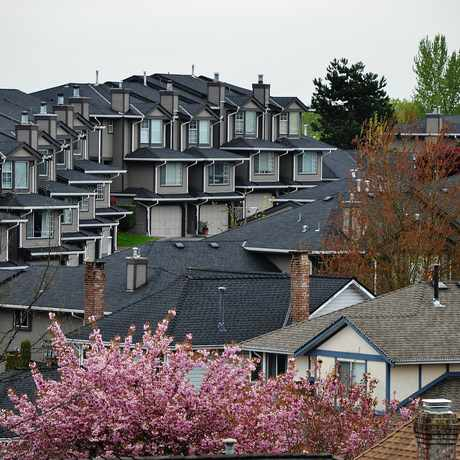 Photo of Castle Crescent in Port Coquitlam