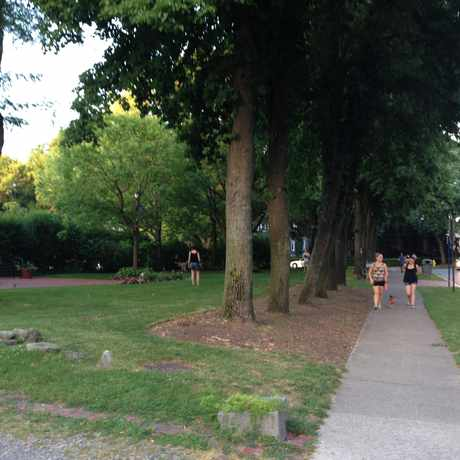 Photo of Park Avenue Green in East Avenue, Rochester