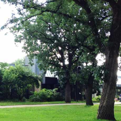 Photo of Luxton Park in Prospect Park, Minneapolis