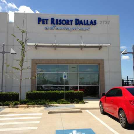 Photo of Pet Resort Dallas in Lovefield West, Dallas