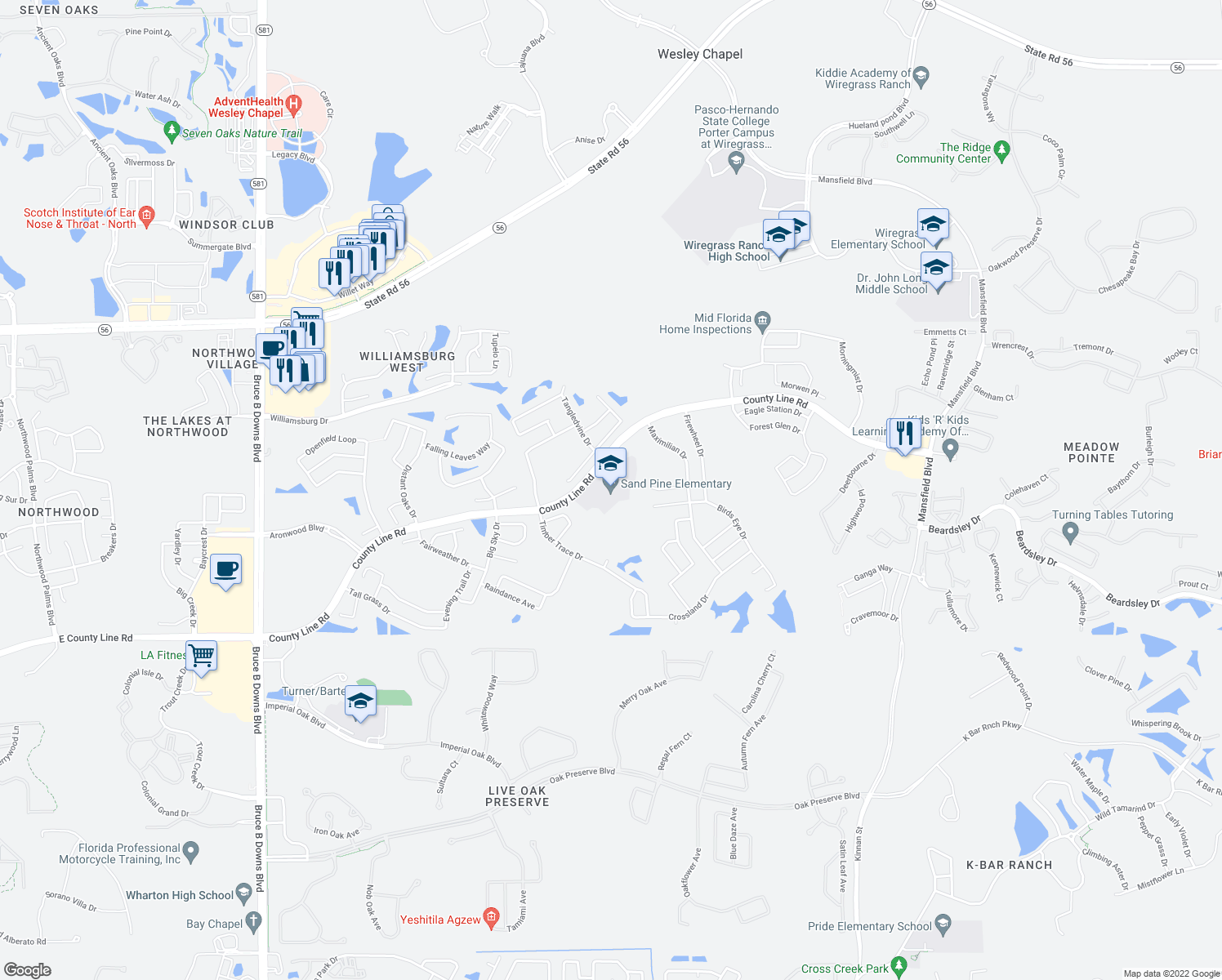 map of restaurants, bars, coffee shops, grocery stores, and more near 29040 County Line Road in Zephyrhills