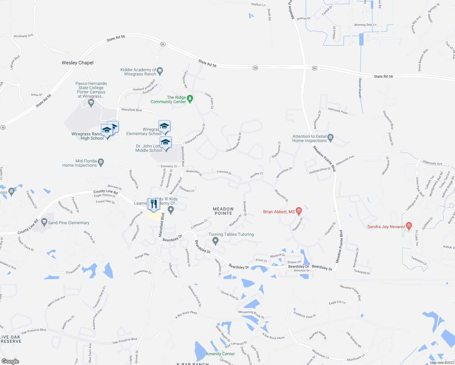 map of restaurants, bars, coffee shops, grocery stores, and more near 30608 Nickerson Loop in Wesley Chapel