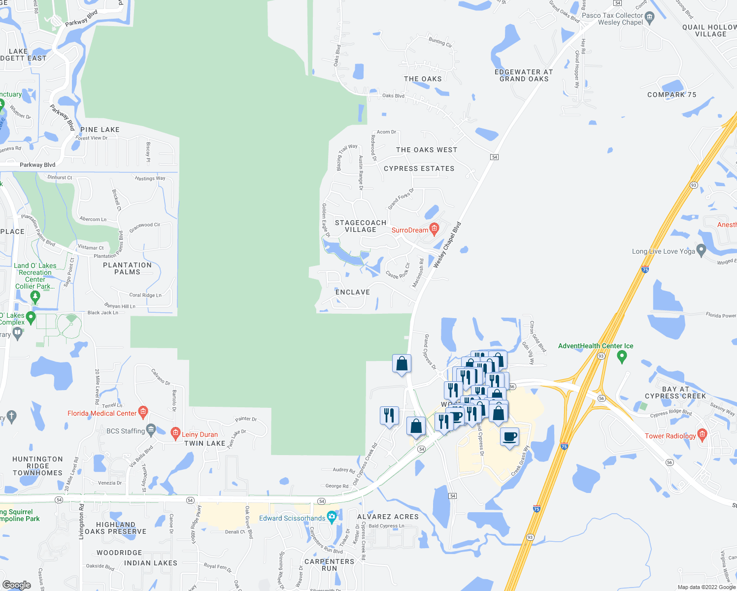 map of restaurants, bars, coffee shops, grocery stores, and more near 25012 Hyde Park Blvd in Land O' Lakes