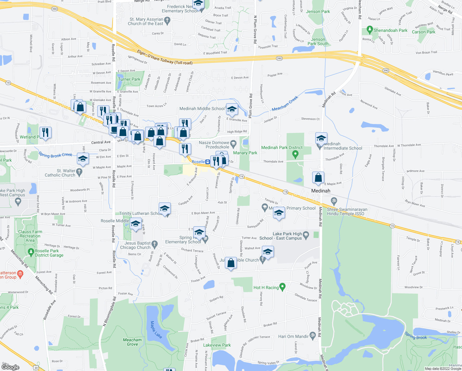 map of restaurants, bars, coffee shops, grocery stores, and more near 225 Springhill Drive in Roselle