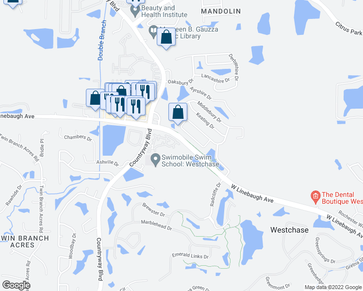 map of restaurants, bars, coffee shops, grocery stores, and more near 10501 Grayslake Court in Tampa