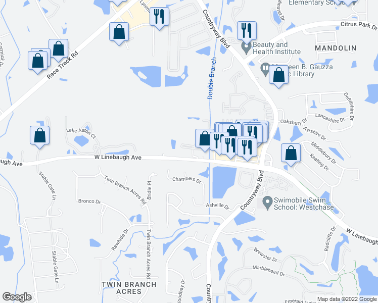 map of restaurants, bars, coffee shops, grocery stores, and more near 12349 West Linebaugh Avenue in Tampa