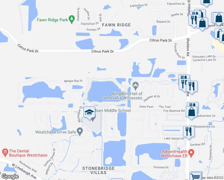 map of restaurants, bars, coffee shops, grocery stores, and more near 9020 Lake Chase Island Way in Tampa