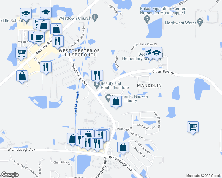map of restaurants, bars, coffee shops, grocery stores, and more near 11229 Windsor Place Circle in Tampa