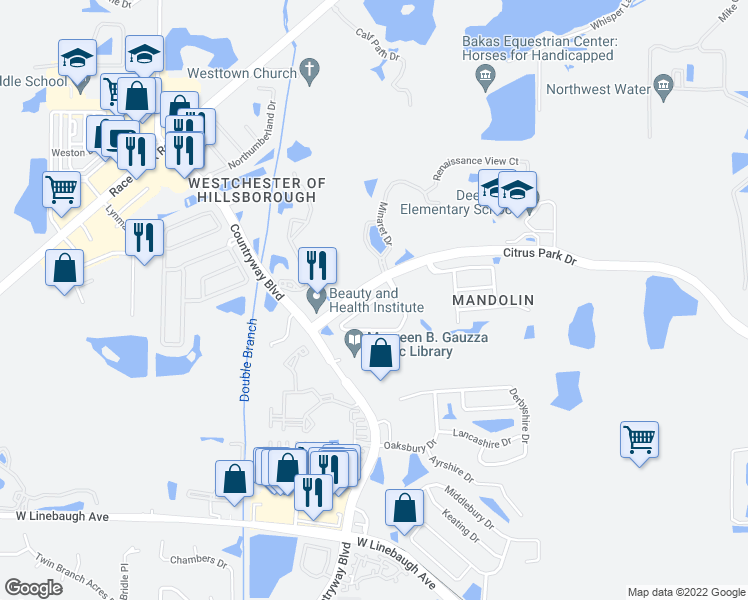 map of restaurants, bars, coffee shops, grocery stores, and more near Windsor Place Circle in Tampa