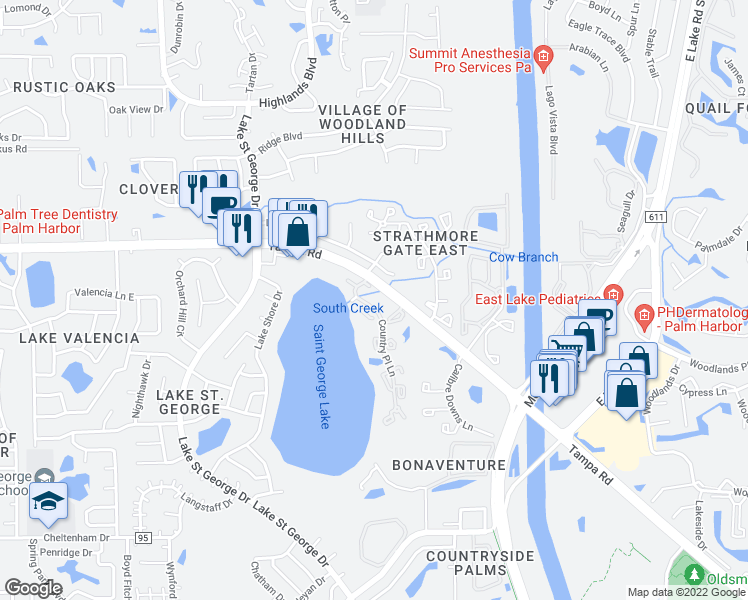 map of restaurants, bars, coffee shops, grocery stores, and more near 3975 Country Place Lane in Palm Harbor