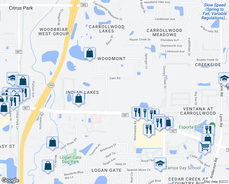 map of restaurants, bars, coffee shops, grocery stores, and more near 13302 Tiger Lilly Lane in Tampa