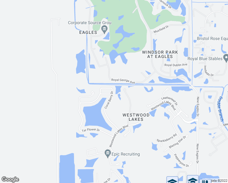 map of restaurants, bars, coffee shops, grocery stores, and more near 14703 Coral Berry Drive in Tampa