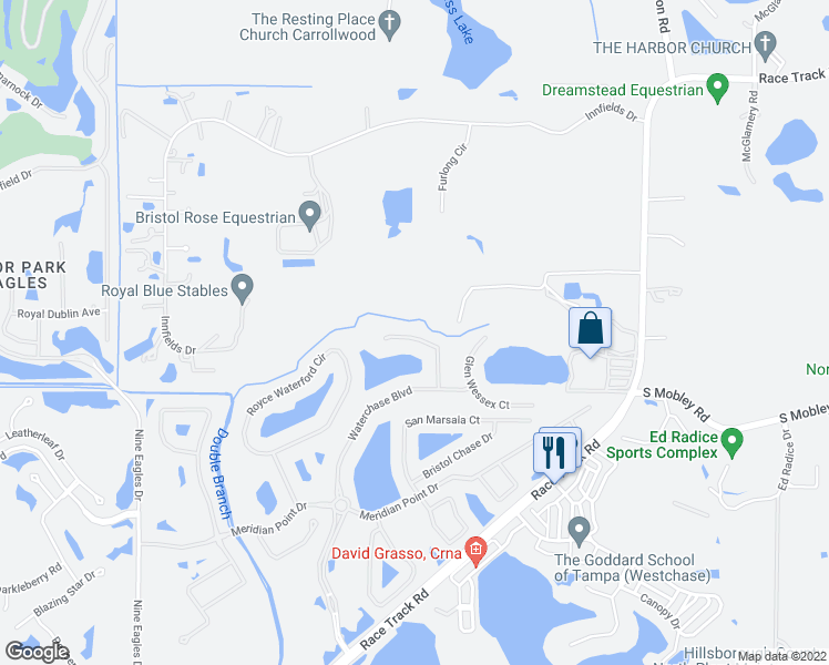 map of restaurants, bars, coffee shops, grocery stores, and more near 11819 Shire Wycliffe Court in Tampa