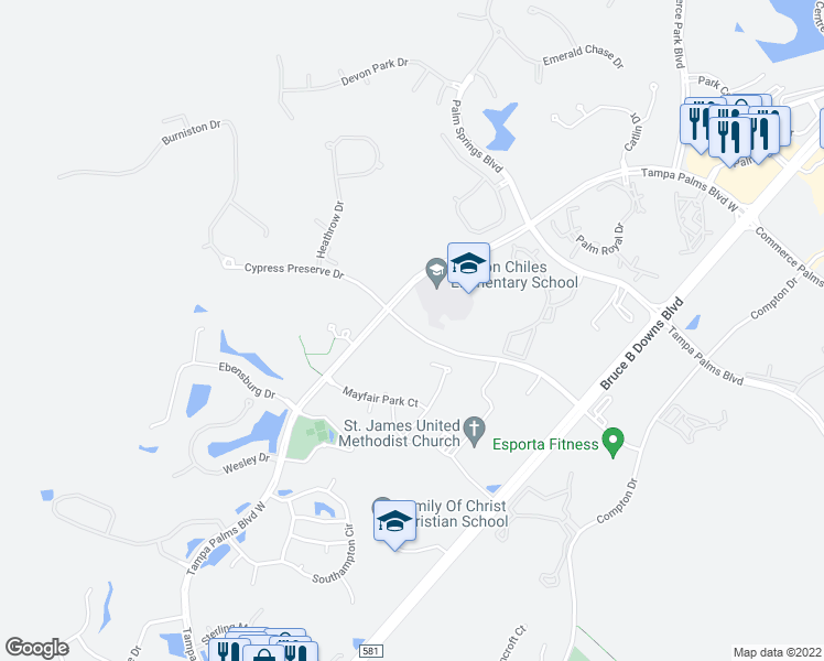 map of restaurants, bars, coffee shops, grocery stores, and more near 5171 Cypress Preserve Drive in Tampa
