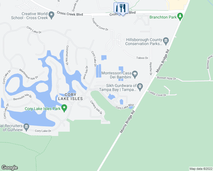 map of restaurants, bars, coffee shops, grocery stores, and more near Anguilla Isle Avenue in Tampa