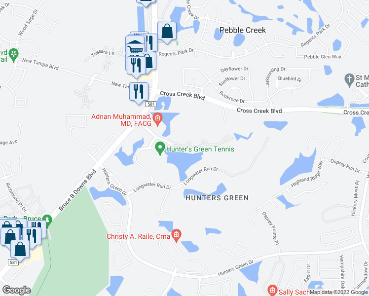 map of restaurants, bars, coffee shops, grocery stores, and more near 8801 Hunters Lake Drive in Tampa