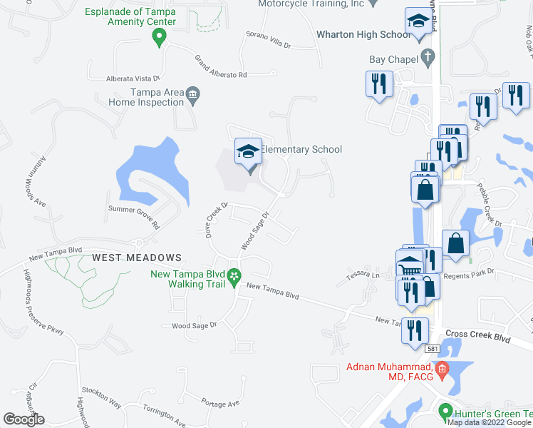 map of restaurants, bars, coffee shops, grocery stores, and more near 19102 Wood Sage Drive in Tampa