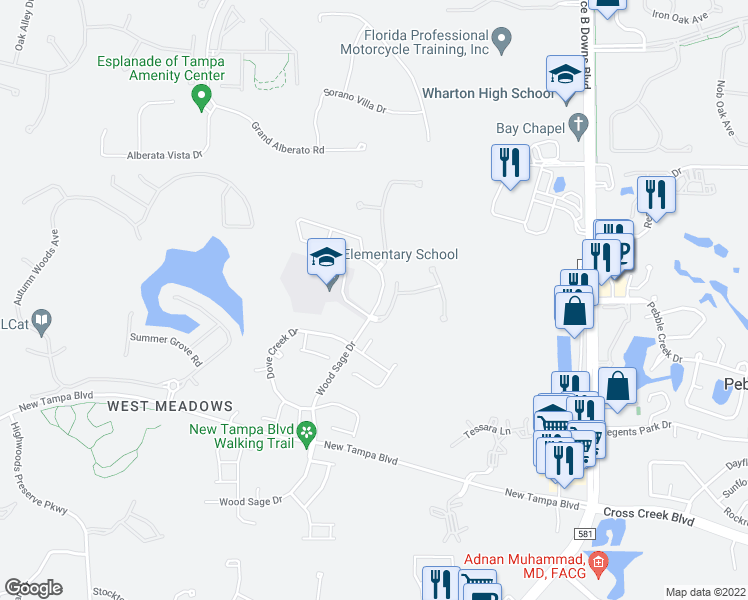 map of restaurants, bars, coffee shops, grocery stores, and more near 19106 Wood Sage Drive in Tampa
