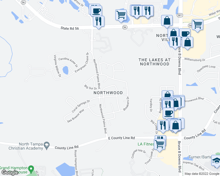 map of restaurants, bars, coffee shops, grocery stores, and more near 1509 Ocean Reef Road in Wesley Chapel