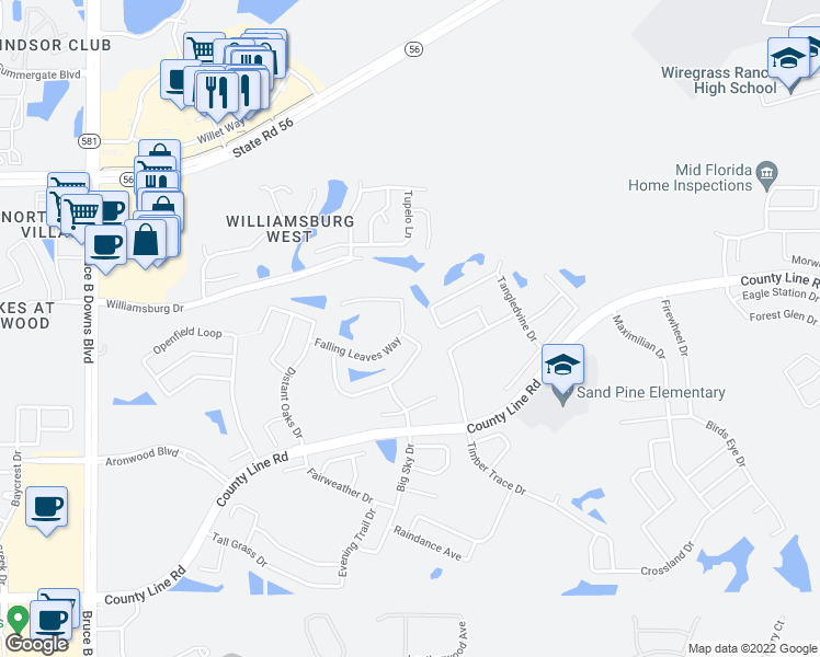 map of restaurants, bars, coffee shops, grocery stores, and more near 28818 Hanging Moss Loop in Zephyrhills