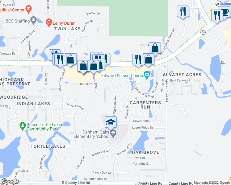 map of restaurants, bars, coffee shops, grocery stores, and more near 1731 Woodcut Drive in Lutz