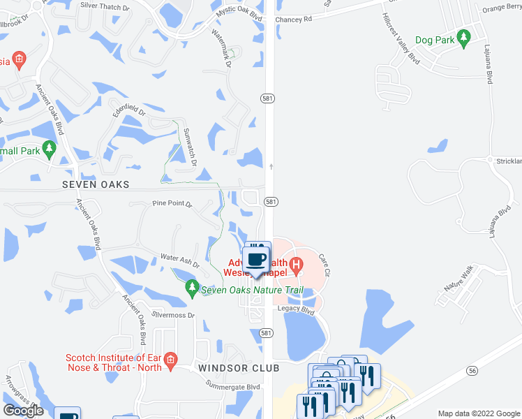map of restaurants, bars, coffee shops, grocery stores, and more near 2903 Birchcreek Drive in Wesley Chapel