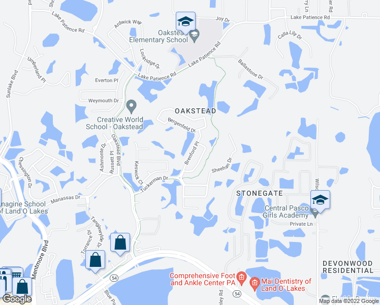 map of restaurants, bars, coffee shops, grocery stores, and more near 3307 Brenford Place in Land O' Lakes