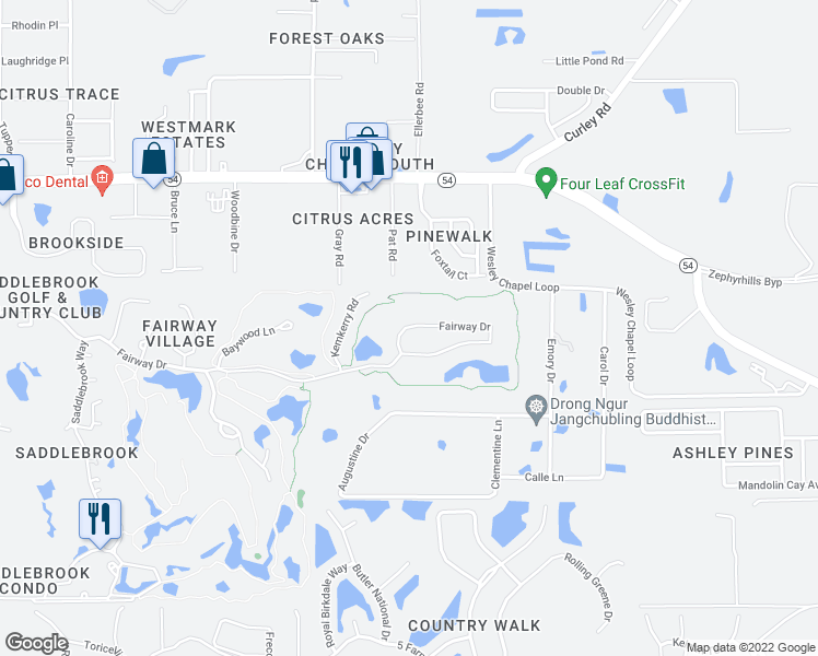 map of restaurants, bars, coffee shops, grocery stores, and more near Fairway Drive in Wesley Chapel