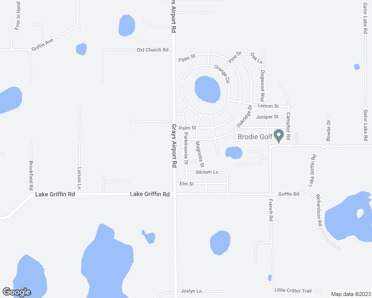 40002 Parkinsonia Street, Lady Lake FL - Walk Score