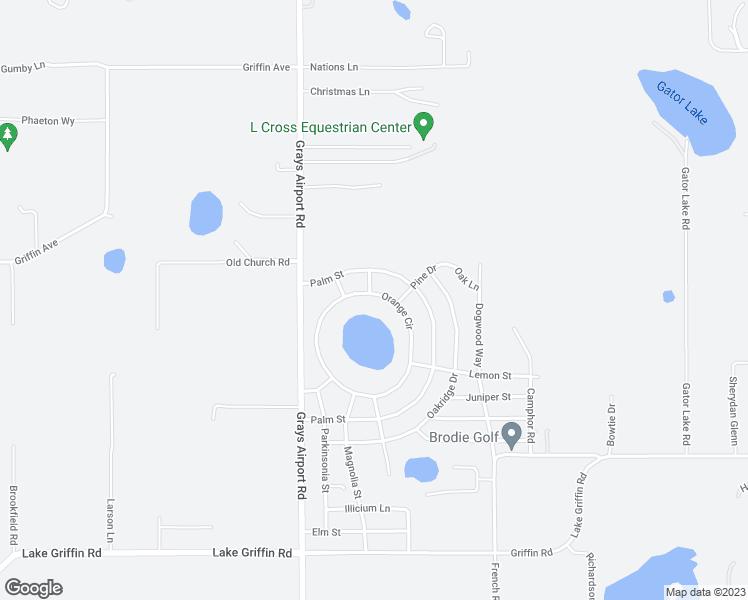 40233 Orange Circle, Lady Lake FL - Walk Score