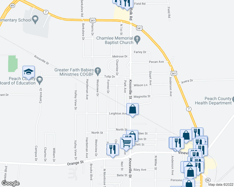 map of restaurants, bars, coffee shops, grocery stores, and more near 618 Chamlee Drive in Fort Valley