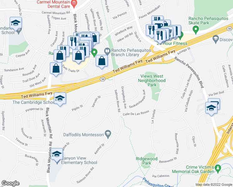 map of restaurants, bars, coffee shops, grocery stores, and more near Salmon River Road in San Diego