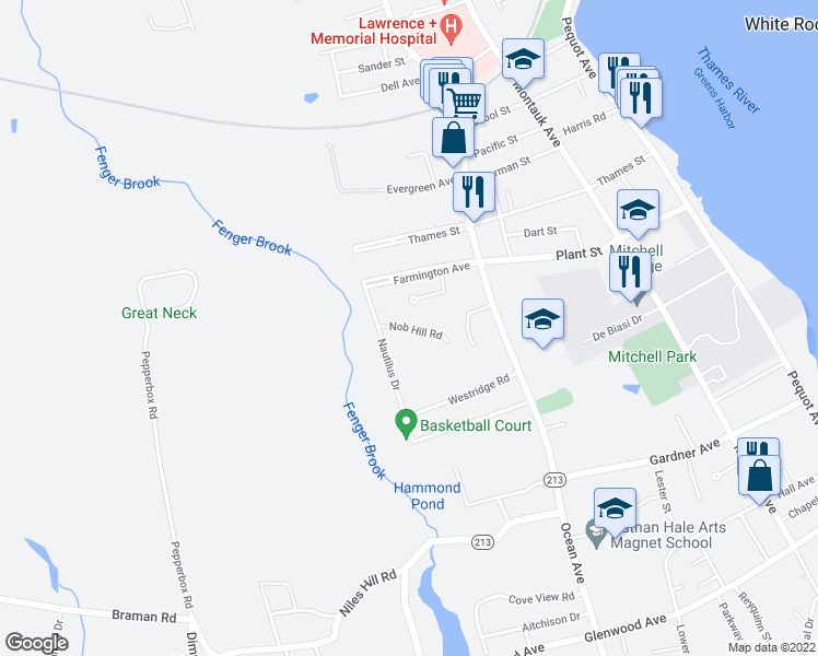 map of restaurants, bars, coffee shops, grocery stores, and more near 59 Nob Hill Rd in New London