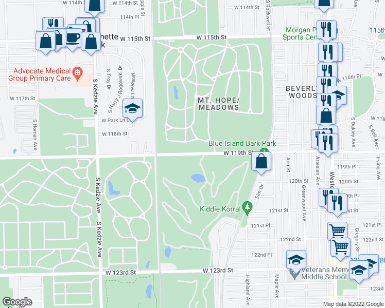 map of restaurants, bars, coffee shops, grocery stores, and more near W 119th St in Chicago
