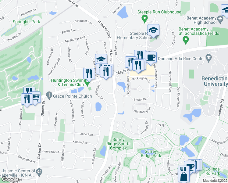 map of restaurants, bars, coffee shops, grocery stores, and more near 20 South Naper Boulevard in Naperville