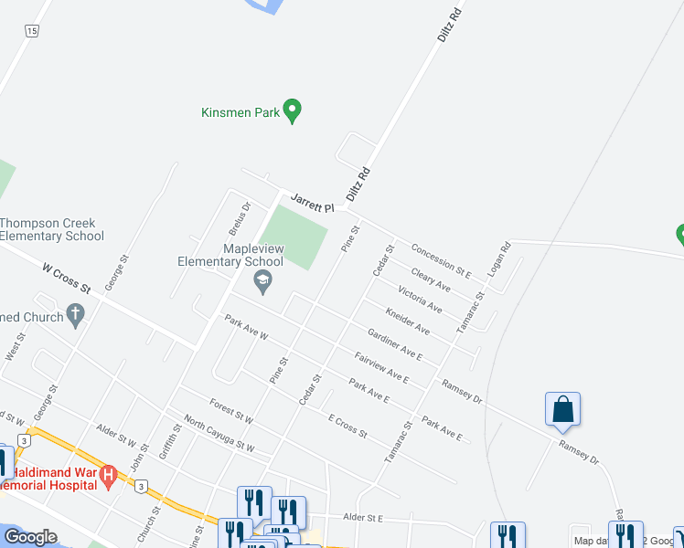 map of restaurants, bars, coffee shops, grocery stores, and more near 1041 Pine Street in Haldimand County