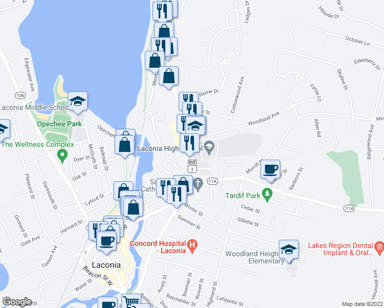 map of restaurants, bars, coffee shops, grocery stores, and more near 325-331 Union Avenue in Laconia