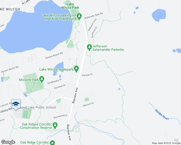 map of restaurants, bars, coffee shops, grocery stores, and more near 50 Dariole Drive in Richmond Hill